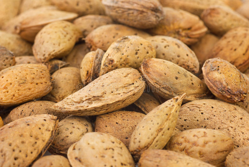 Download Abstract Background: Unshelled Almonds Stock Image - Image: 21321893
