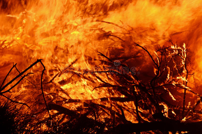 Abstract background wild flames of bush fire royalty free stock images