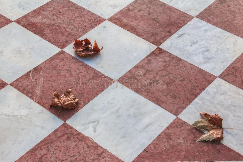 Abstract or beautiful background. Leaves and marble. Autumn. Fallen leaves. Like a chessboard.  The color of fallen leaves stock image