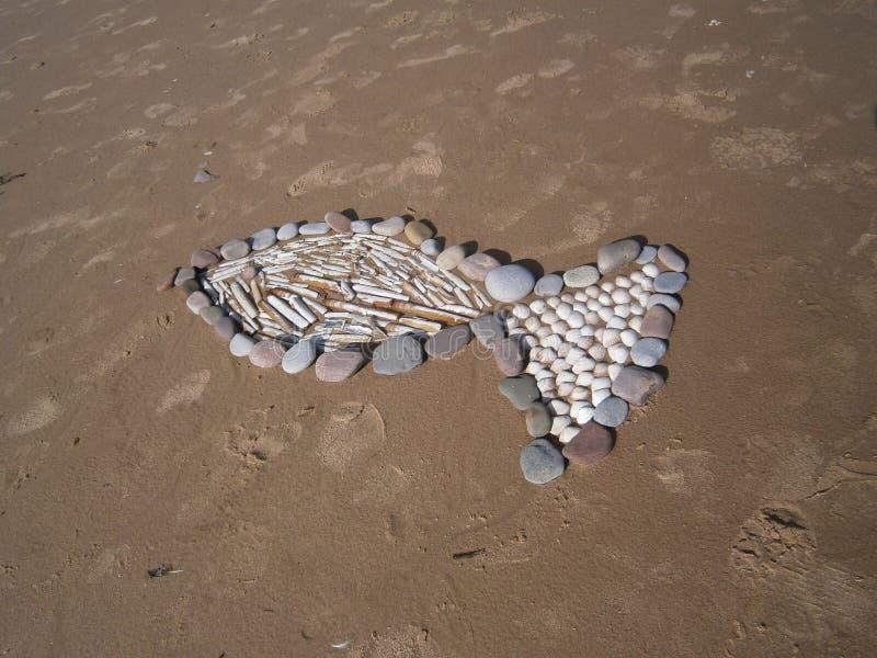 Abstract beeld van een vis in het zand stock foto's