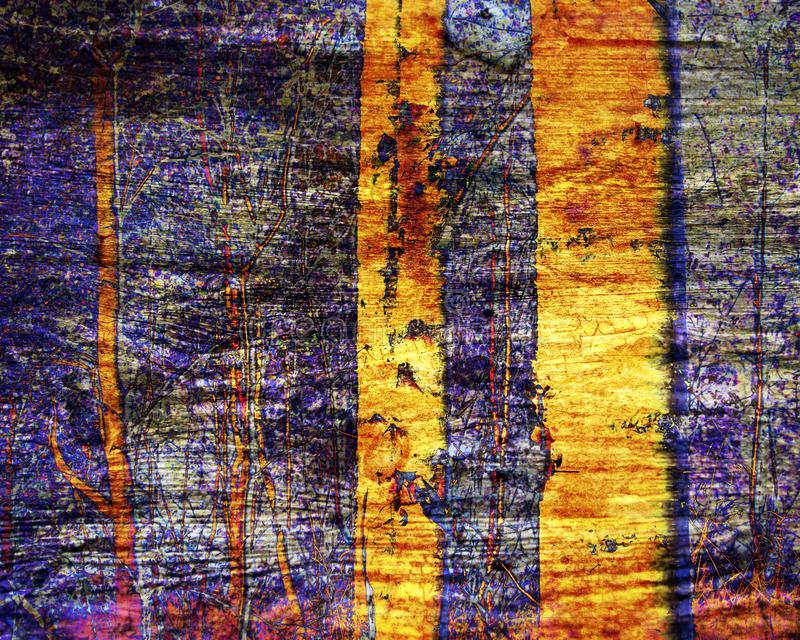 Abstract birch trees in woods. Digital art with overlay , blends and textures in gold, purple, orange. Great as a stand royalty free stock photography