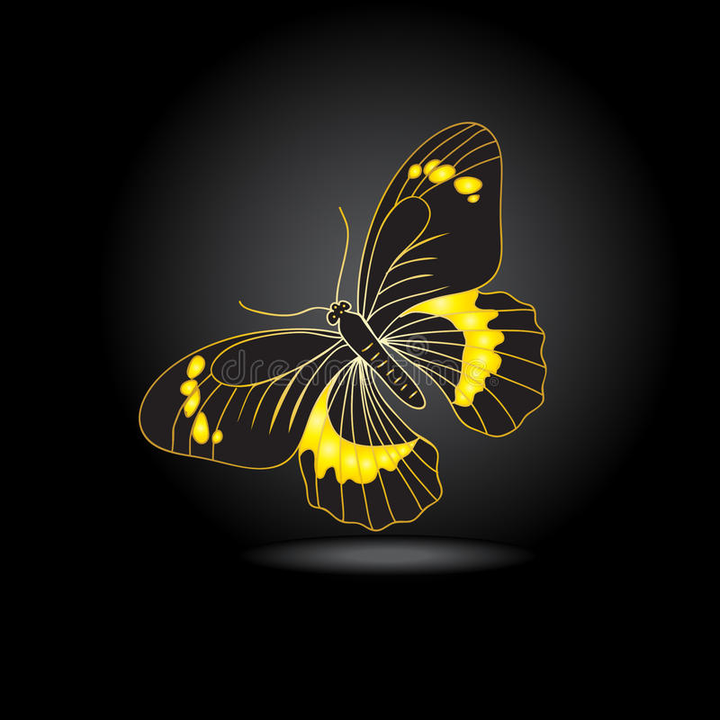Abstract black and gold butterfly. On white background vector illustration
