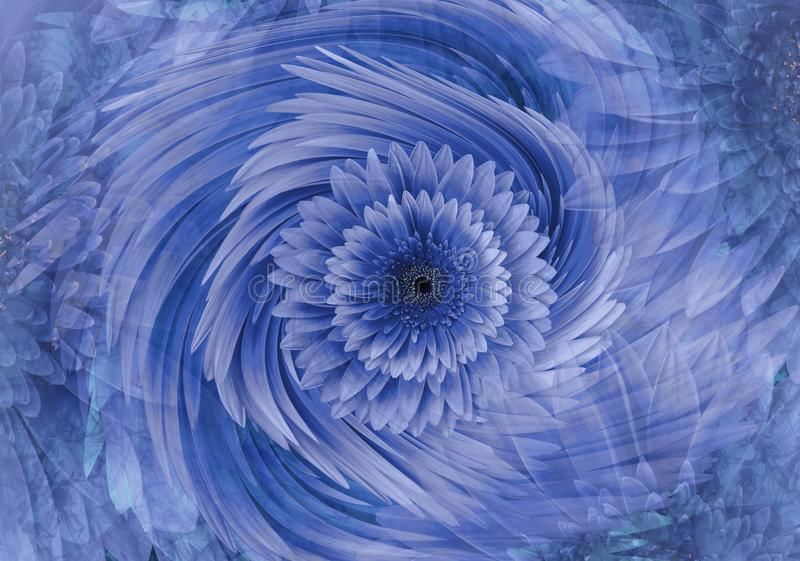 Abstract blue-violet bright floral background. Gerbera flowers petals close-up. Greeting card. Floral collage. Nature royalty free stock image