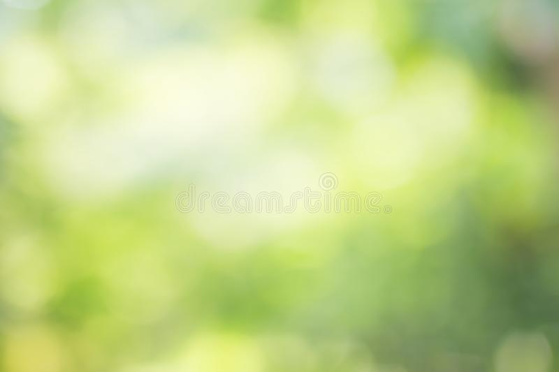 Abstract blur green color for background,blurred and defocused e. Ffect spring concept for design royalty free stock image