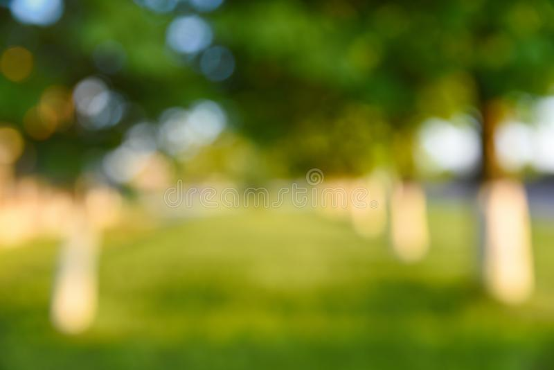 Abstract blurred background, park and beautiful sunlight stock photos