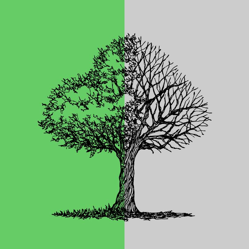 Abstract boom half groen verlof en zwarte droge tak, de getrokken vectorillustratie van de de lenteherfst hand vector illustratie