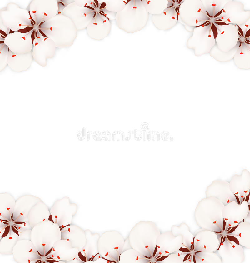 Abstract Border Made In Cherry Blossom Stock Vector - Illustration ...
