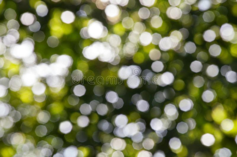Abstract bright green blurred bokeh background close up, defocused round green and white lights texture backdrop. Natural summer shiny sunlight pattern stock photo