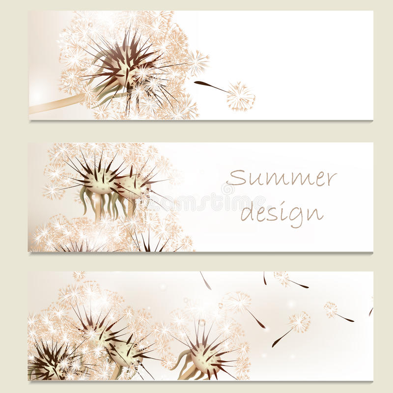 Abstract business vector cards set with dandelions for design royalty free stock images