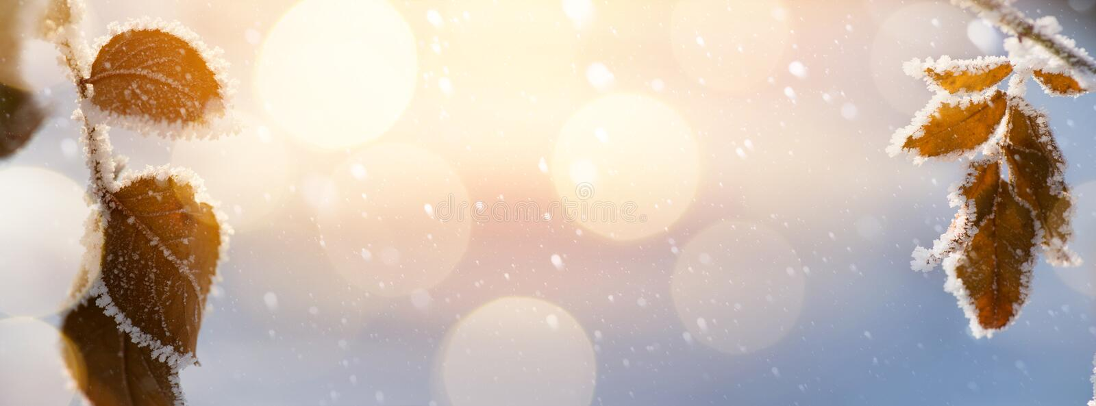 Abstract Christmas background. Winter Landscape royalty free stock image