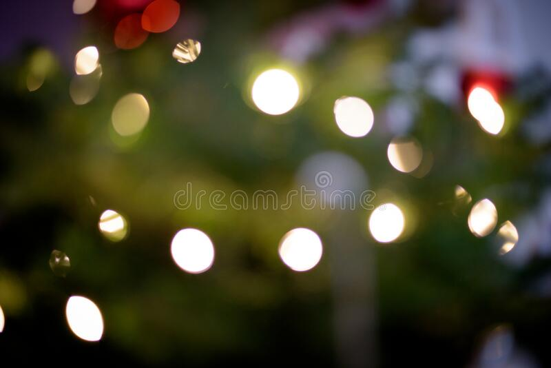 Abstract Christmas tree lights with green tree in background stock photography