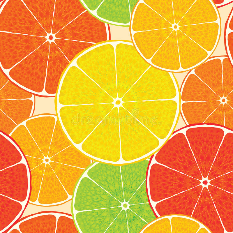 Abstract citrus high-detailed background. Seamless royalty free illustration