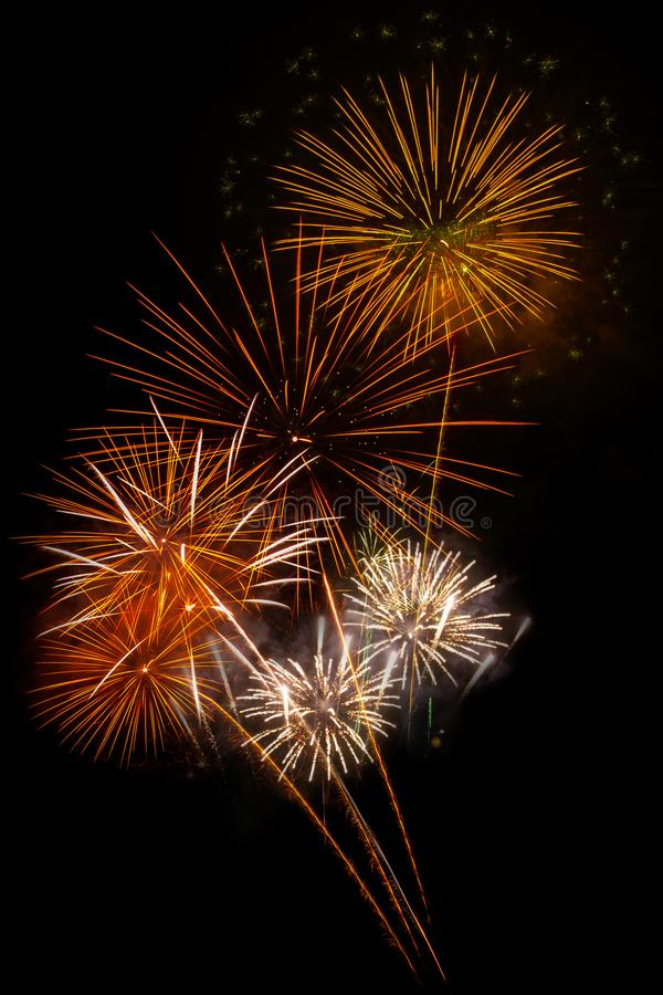 Fireworks light up the sky. Abstract colored firework background,Fireworks light up the sky royalty free stock photo