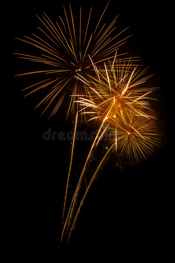 Fireworks light up the sky. Abstract colored firework background,Fireworks light up the sky royalty free stock images