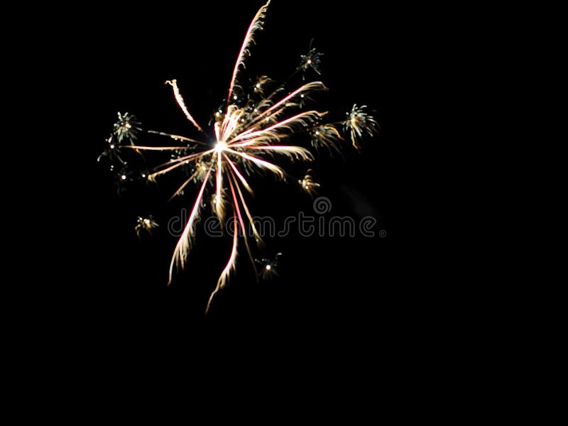 Abstract colored firework on black sky. New Year and Celebration concept royalty free stock images