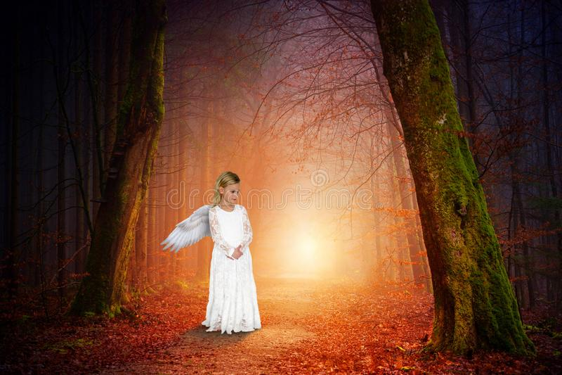 Peace, Nature, Love, Angel, Girl. Abstract concept for peace, hope, love, spiritual rebirth, and nature. A young angel girl hikes through a deep dark forest and stock images