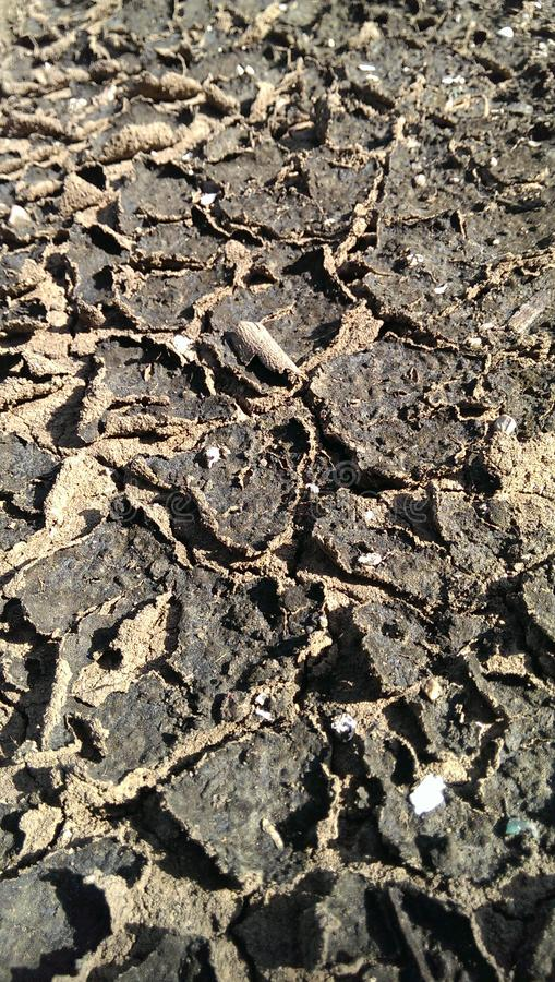 Abstract crack cracked dirt earth ground land nature pattern royalty free stock images