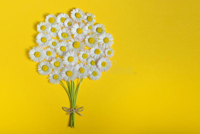 Abstract Daisy Flower Bouquet Stock Image - Image of margarita ...