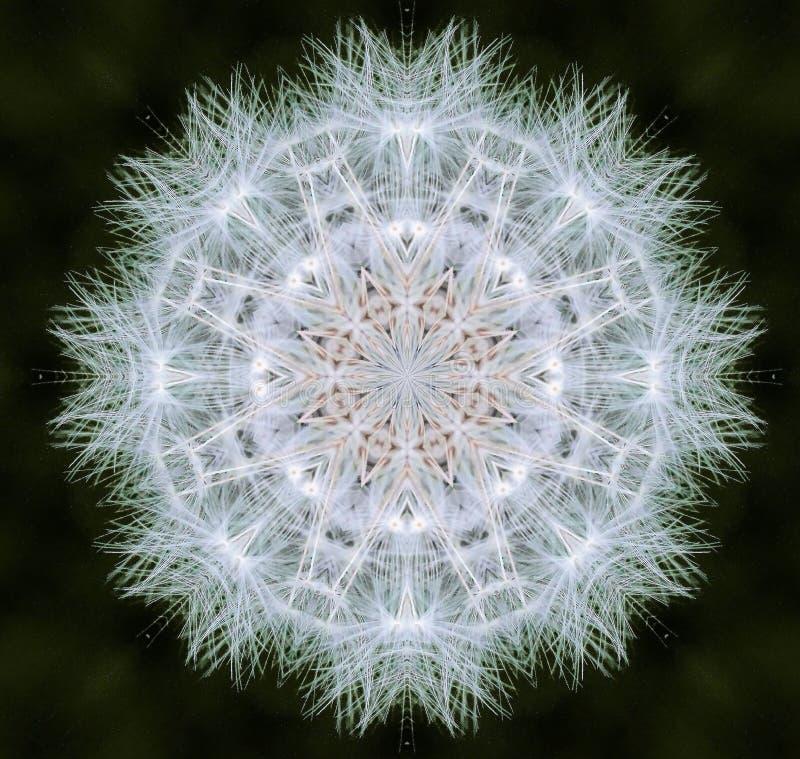 Abstract dandelion clock royalty free stock photo