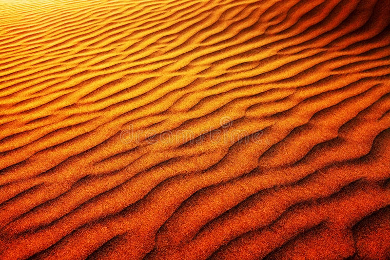 Abstract desert pattern. In Thar Desert in India, Asia royalty free stock photography