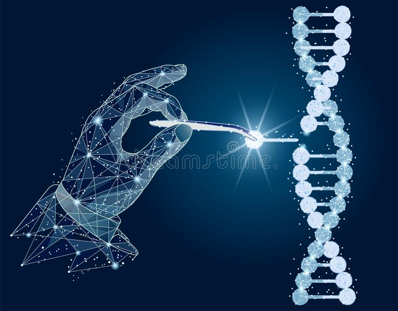 Abstract design. Manipulation of DNA double helix with with bare hands, tweezers. isolated from low poly wireframe on. Manipulation of DNA double helix with with royalty free illustration