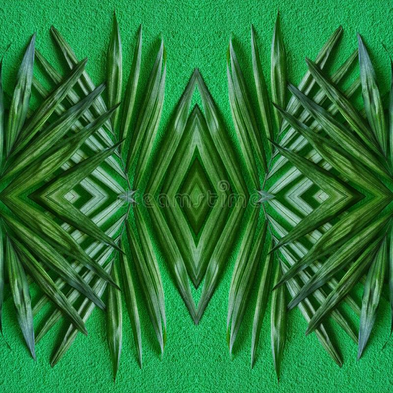 Abstract design with palm plant leaves and green background. Tropical, leaf, nature, natural, environment, ecology, backdrop, decorative, ornament, wallpaper stock photography