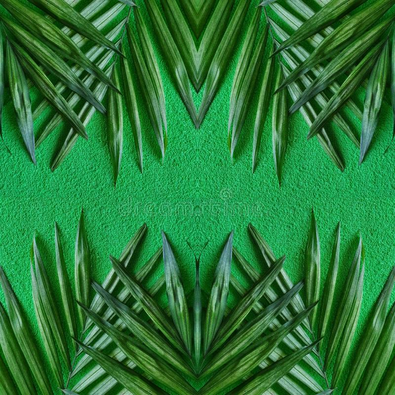 Abstract design with palm plant leaves and green background. Tropical, leaf, nature, natural, environment, ecology, backdrop, decorative, ornament, wallpaper stock image