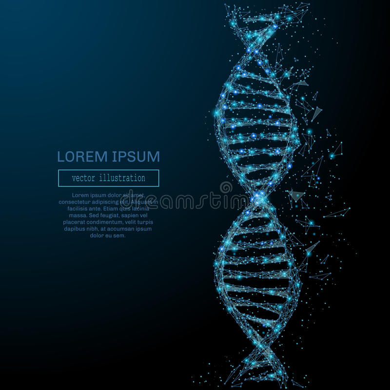 Abstract DNA concept. Polygonal DNA concept. Vector mesh spheres from flying debris. Thin line concept. Blue structure style illustration vector illustration