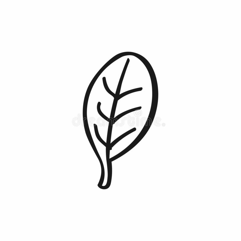 Abstract doodle leaf. Icon, logo, symbol drawn by hand. Isolated vector illustration royalty free illustration