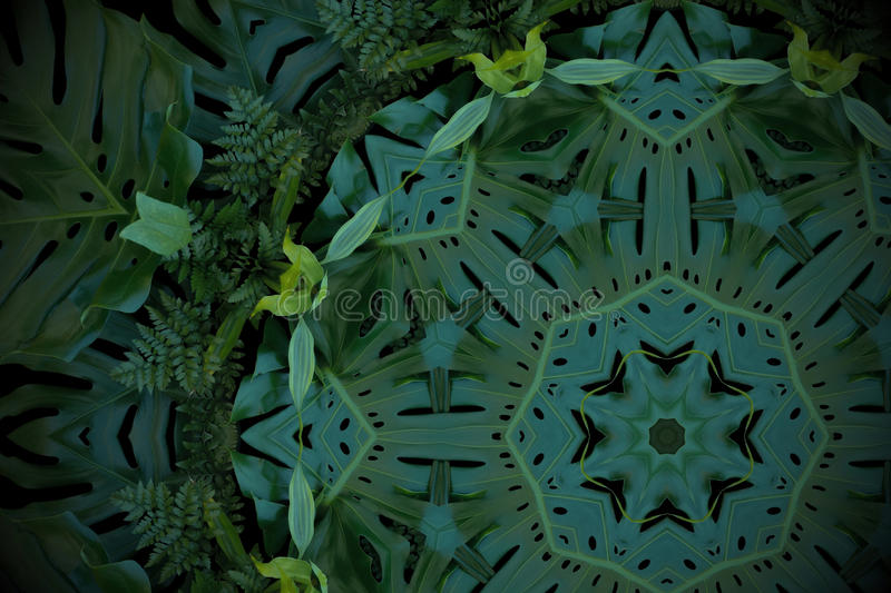 Abstract emerald green background, tropical leaves pattern with. Kaleidoscope effect stock image