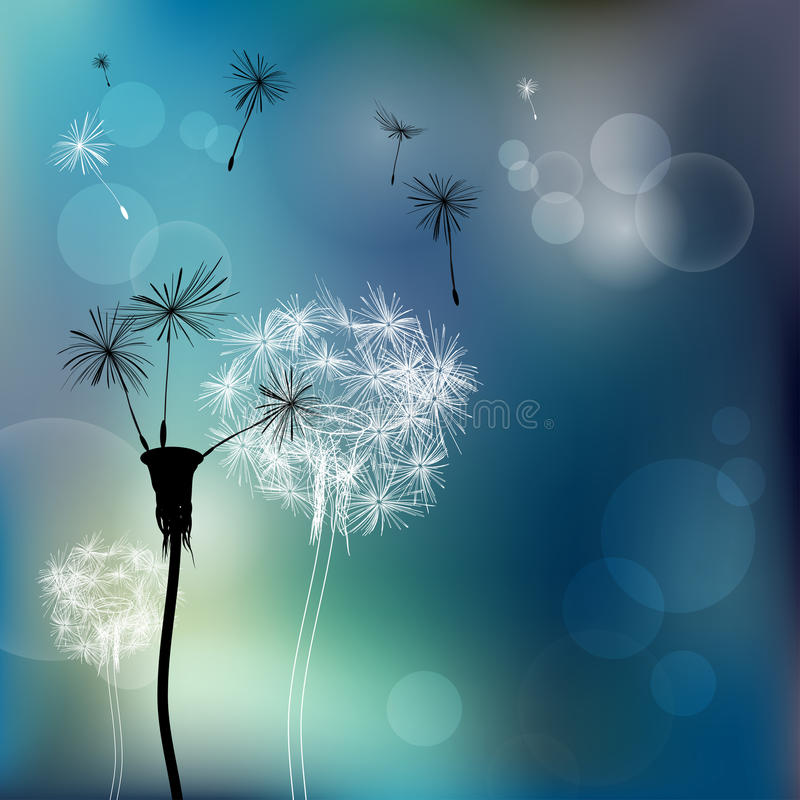 Download Abstract faded dandelions stock vector. Image of growth - 23487536