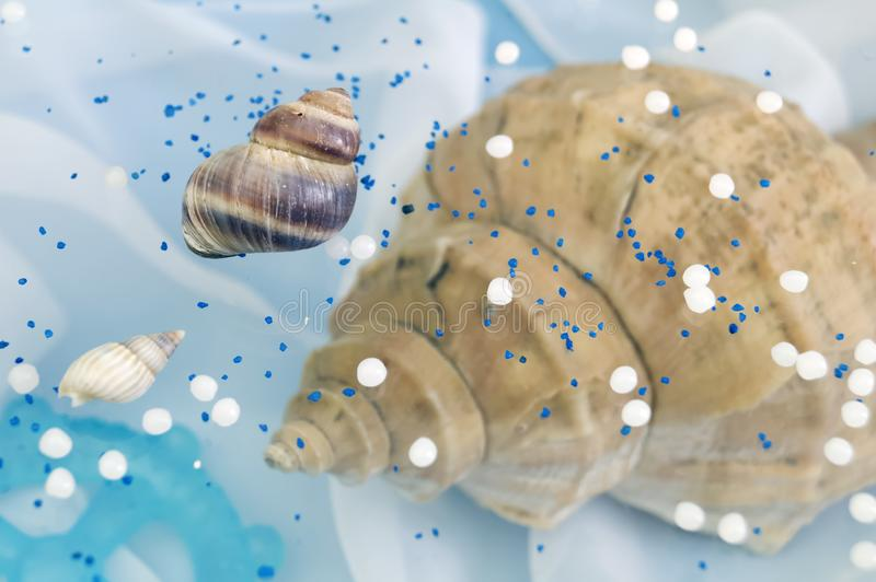 Abstract fantasy background on the sea theme with shells. And blue steering wheel stock images