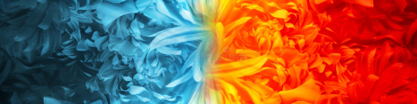 Abstract Fire and Ice element created from flower petals using color theme against vs each other background. stock illustration