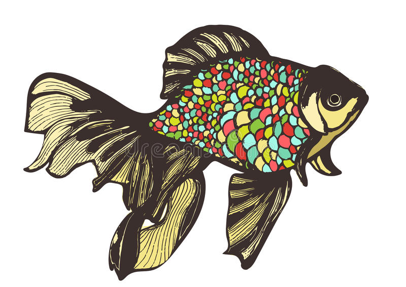 Abstract fish sketch, hand drawing, vector illustration. Decorative with motley multicolored scales. Handmade element stock illustration