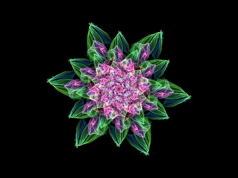 Abstract flame pink mandala flower with green leaves, ornamental floral round pattern on black background. Yoga theme stock illustration
