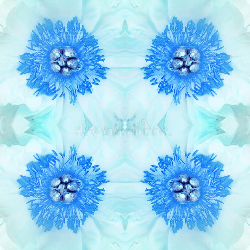 Abstract floral background from the heart of an open blue peony flower. Close-up, macro photography. seamless texture.  vector illustration