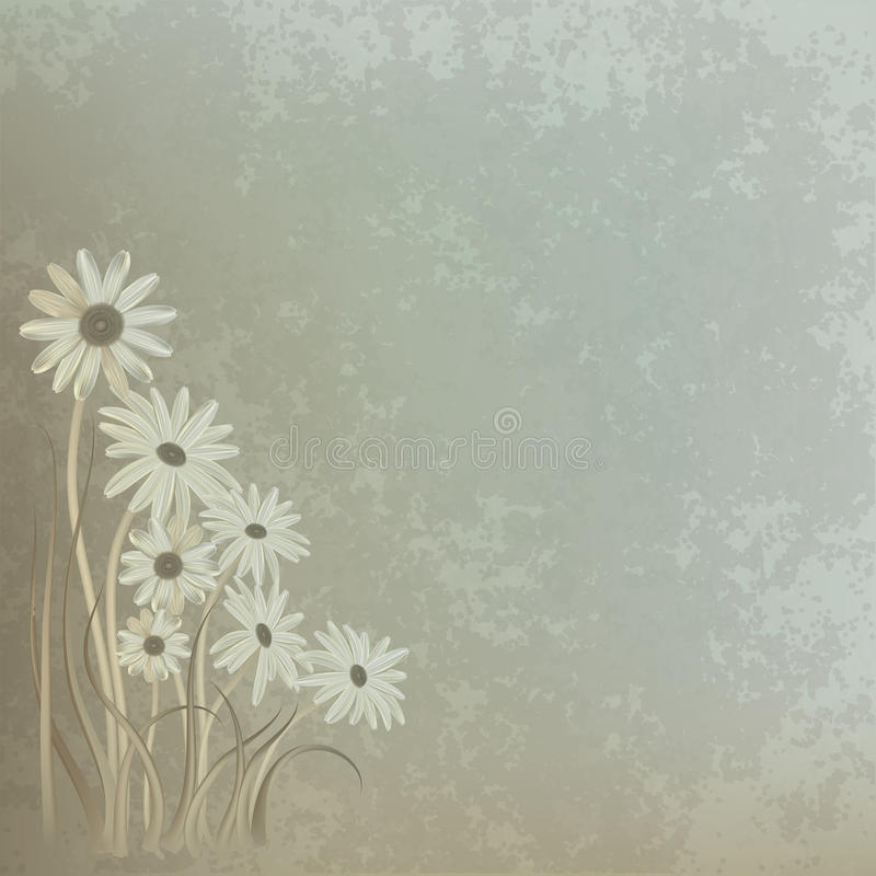 Free Abstract Floral Background With Chamomiles Stock Images - 19509064
