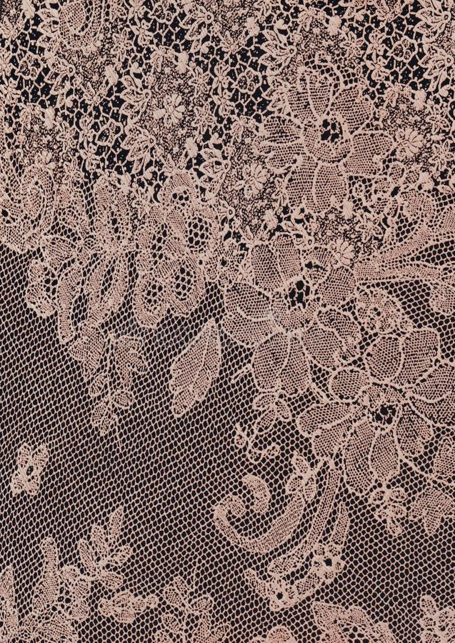 Abstract floral beige lace texture background. Abstract floral beige lace texture for romantic , feminine background, clothing royalty free stock photos