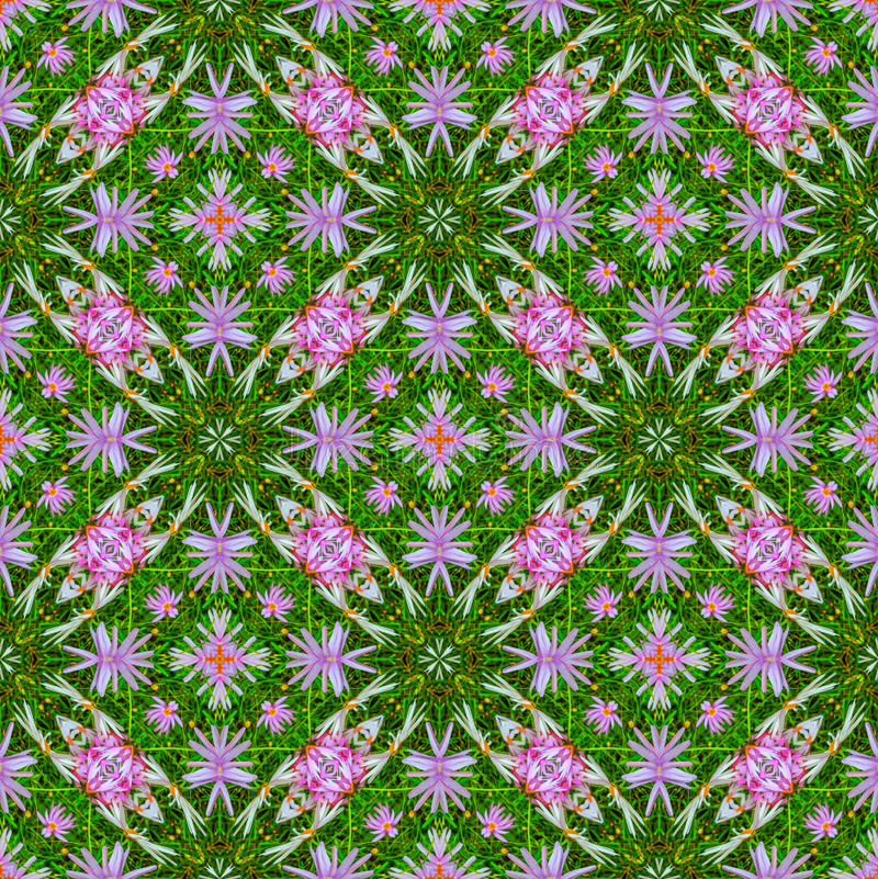 Abstract floral pattern 6 royalty free illustration