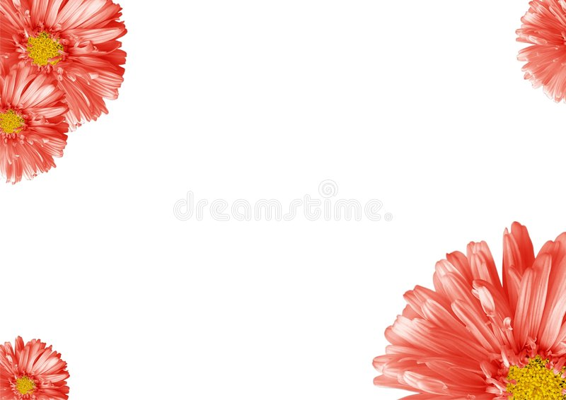Abstract flower border royalty free stock photos