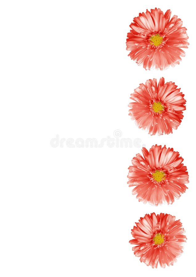 Free Abstract Flower Border Stock Images - 3162414