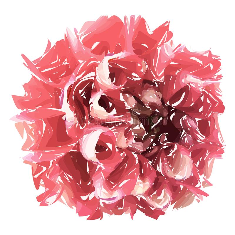 Abstract flower, pink chrysanthemum isolated on white background. royalty free illustration