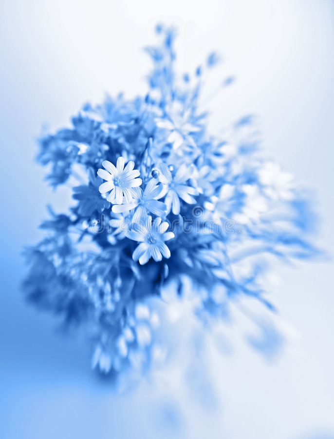 Free Abstract Flowers In Vase Stock Photos - 5723053