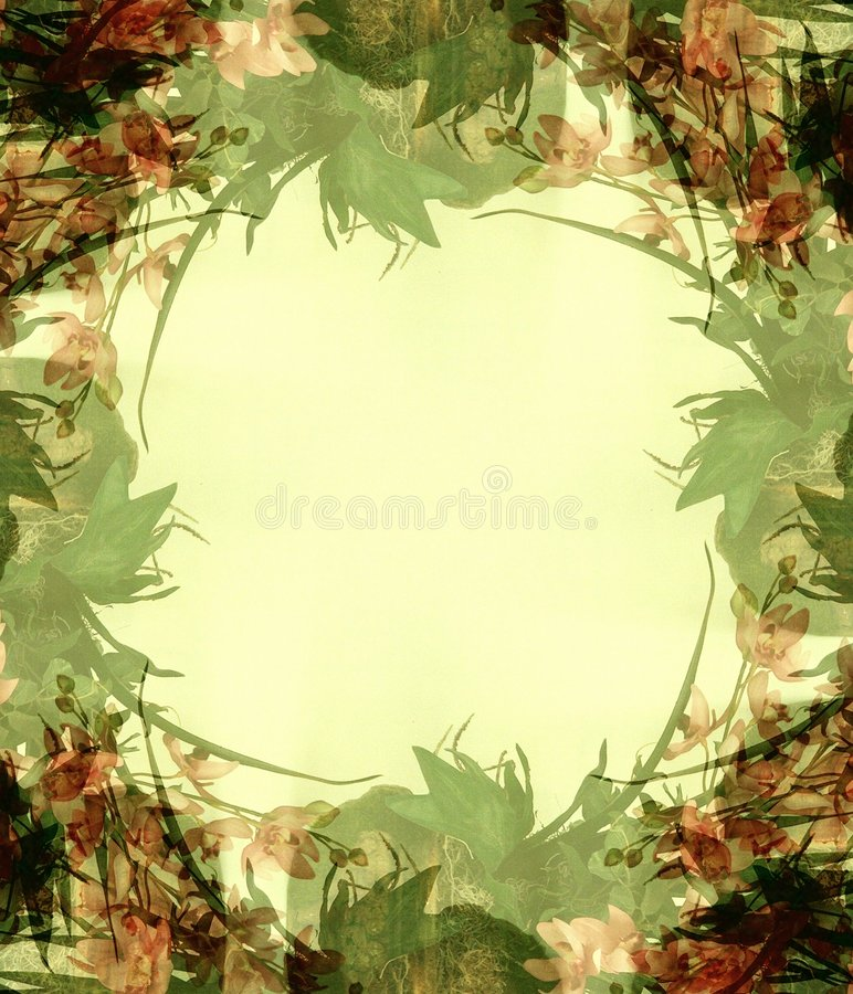 Abstract Flowers Photo Frame 3 vector illustration
