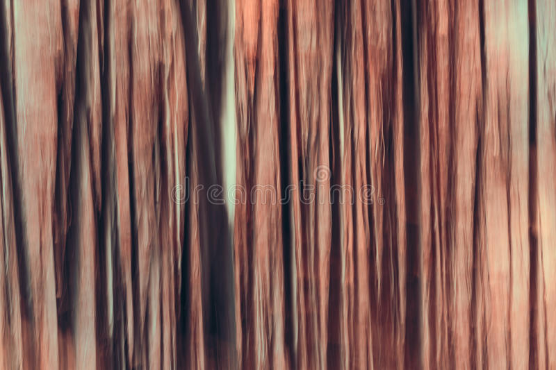 Abstract forest. Artistic Abstract autumnal forest composition royalty free stock photography