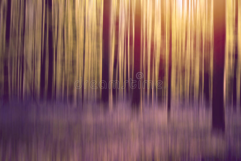 Abstract forest. Blurry motion background stock photos