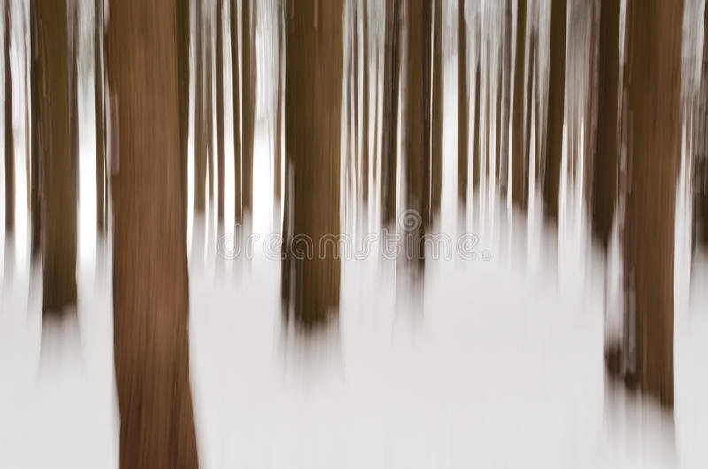 Abstract forest in winter. Shot with panning technique stock photos