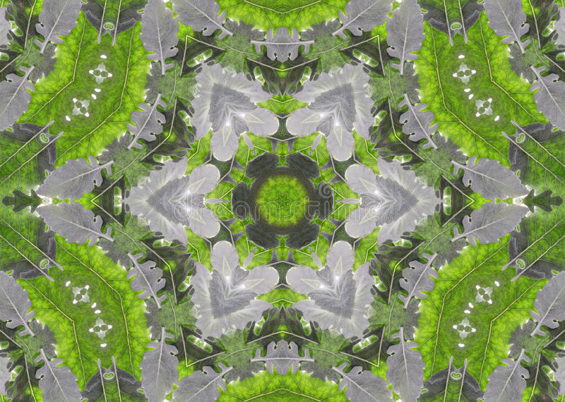 Download Abstract Fractal Background  - Green Leaves Royalty Free Stock Image - Image: 12569806