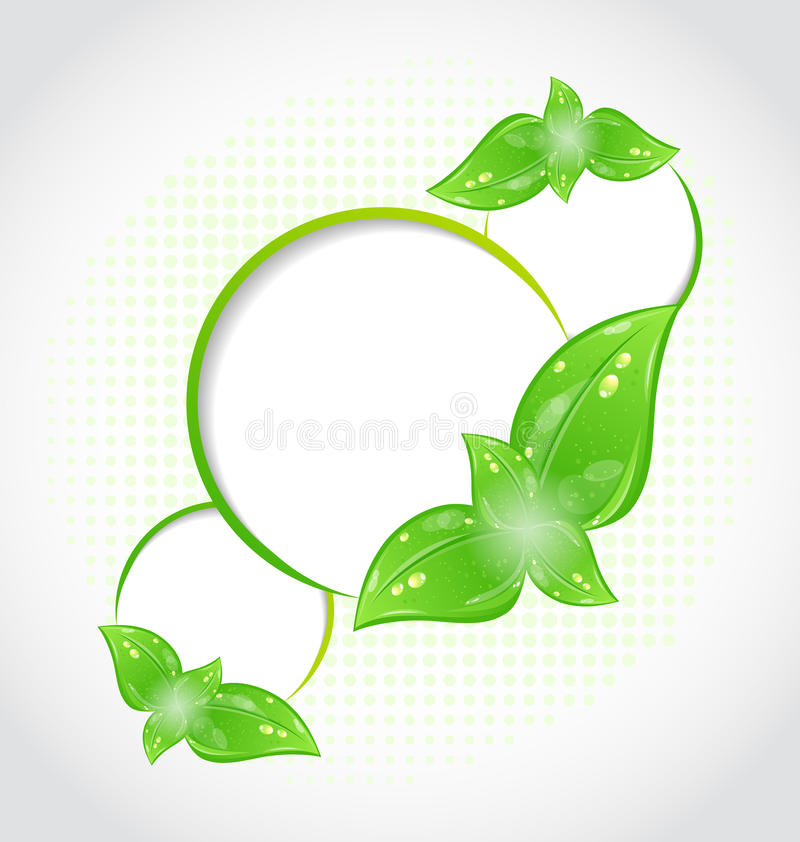 Abstract Frames With Eco Green Leaves Stock Vector - Illustration of ...
