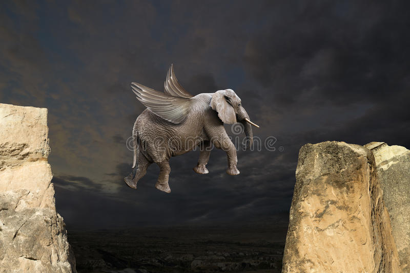 Abstract Fun Flying Elephant With Wings Concept Stock Photo